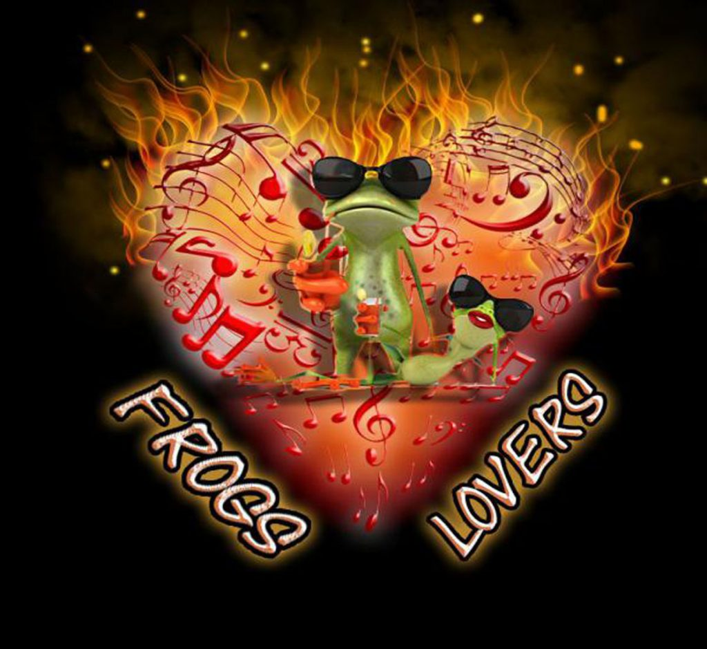 Duo musical pour animations Frogs Lovers de Lyon